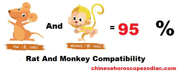 Rat Monkey Compatibility in Chinese Astrology