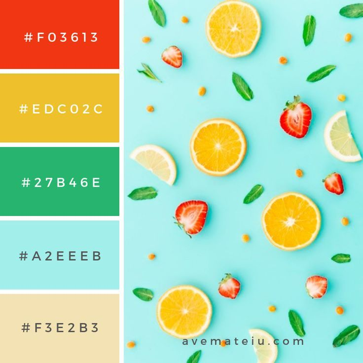 20 summer color palettes and hex codes