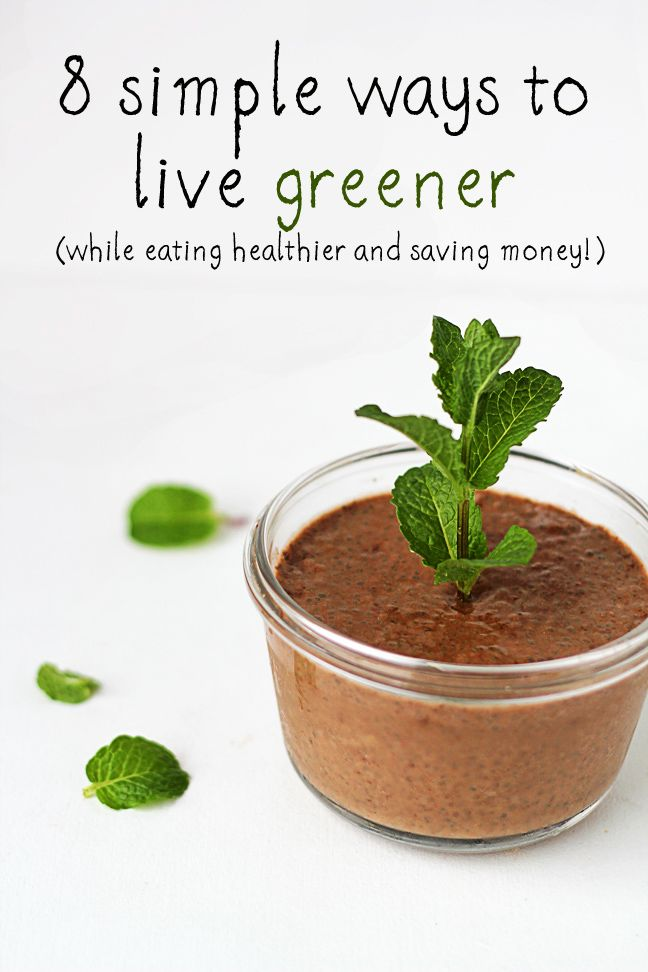8 Simple Ways to Live Greener. Easy tips to help you live a healthier and more sustainable lifestyle!