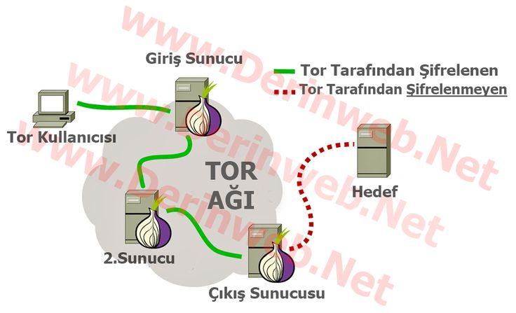 Tor Browser Nedir? Ne İşe Yarar? Kurulum   Merhaba arkadaşlar, Tor browser nedir  konusunda önemli...