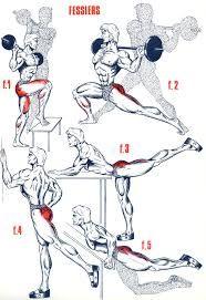 """Résultat de recherche d'images pour """"exercice musculation fessier"""""""