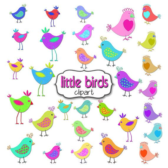 Bird Clipart 30 Cute Little Birds for your Summer Designs by TheArtBoxDesigns
