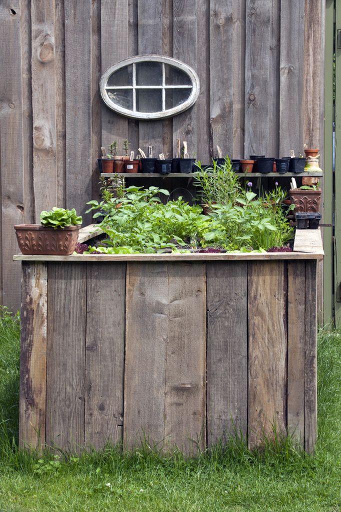 """Sie möchten eine Salatbar oder Gemüsetheke eröffnen, an der man rückenschonend Gärtnern und Ernten kann? Dann ist ein Hochbeet die ideale Lösung. Das """"Gärtnern auf hohem Niveau"""" liegt voll im Trend."""