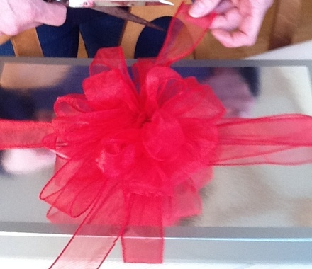 How to Make a Decorative Bow - Snapguide
