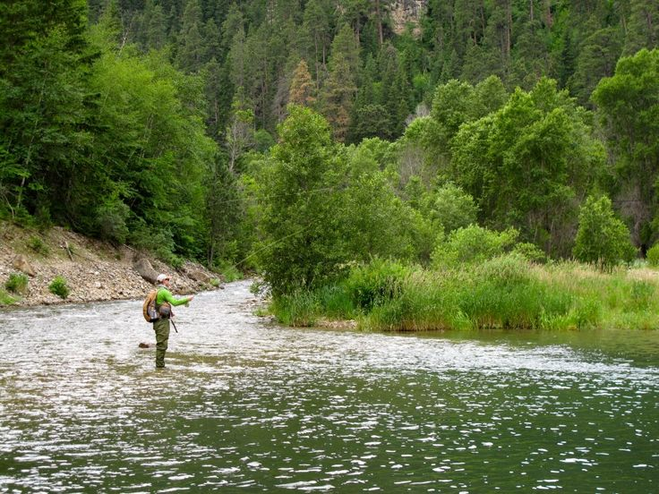 7 best images about black hills events on pinterest for South dakota fishing