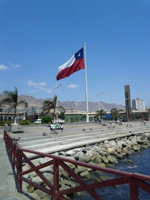 Chile bandera gigante. Antofagasta