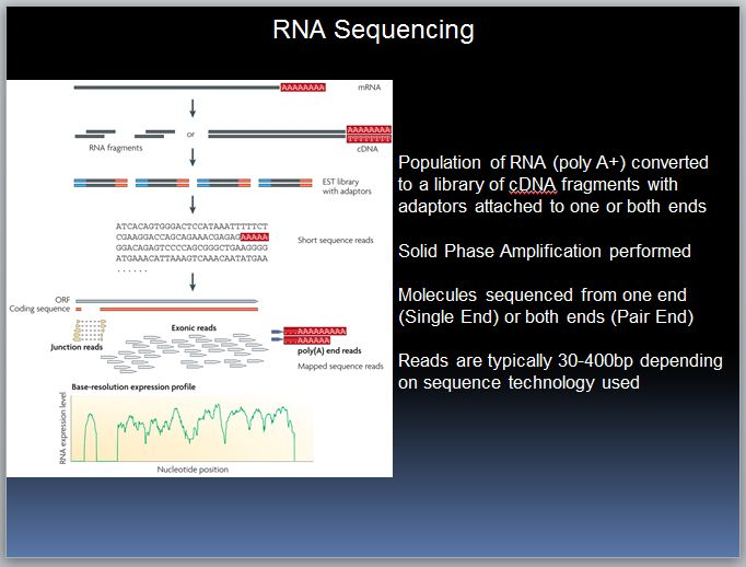 RNA Seq: A (soon to be outdated) Tutorial. A Brief History of Sequencing and Gene Expression. Limitations of Sanger Sequencing. Low throughp...