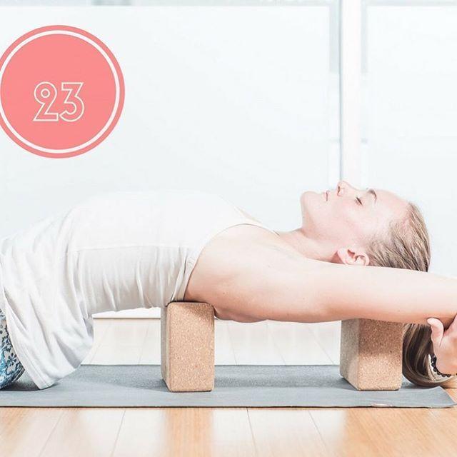 Cette posture apporte beaucoup de bien et de détente aux épaules et au cou, une région souvent affectée par le « le techno stress », une conséquence fréquente des postes de travail et des activités habituelles d'aujourd'hui. #suptamatsyasana #poissonsupporte #stess #shoulders #relax #yoga #yogalove #yogalife