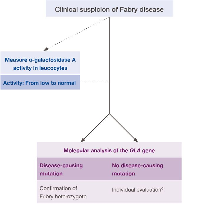 Fabry Disease algorithm in women... Shire Pharmaceuticals. Click visit for a clearer view...