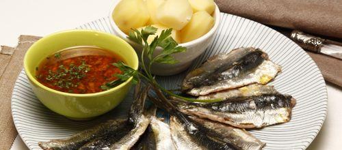 Molho à Espanhola - Visite-nos em: www.teleculinaria... | Descubra receitas deliciosas, truques, dicas, cursos, o Blog Culinária A-Z e muito mais!