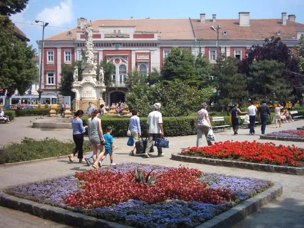 Timisoara Department for International Relations