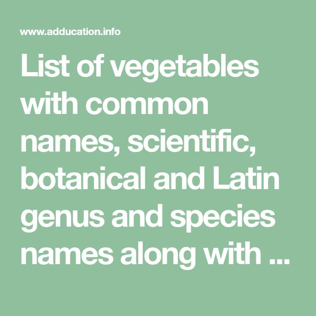 List Of Vegetables With Common Names Scientific Botanical And Latin Genus And Species Names Along With Vegetable F List Of Vegetables Common Names Vegetables