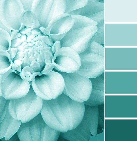 Turquoise Color Palette by Digirrl