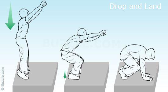 Drop and Landp
