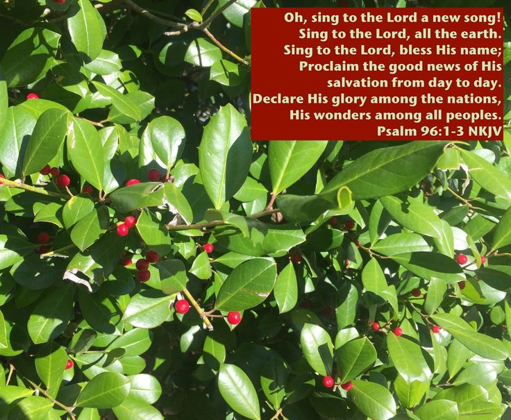 The Lord took me to Psalm 96 this morning. This Psalm is another one that encourages everyone to praise Him. As I read the first three v...