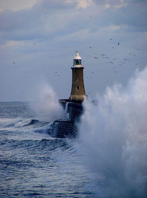 Tynemouth #Lighthouse    http://dennisharper.lnf.com/