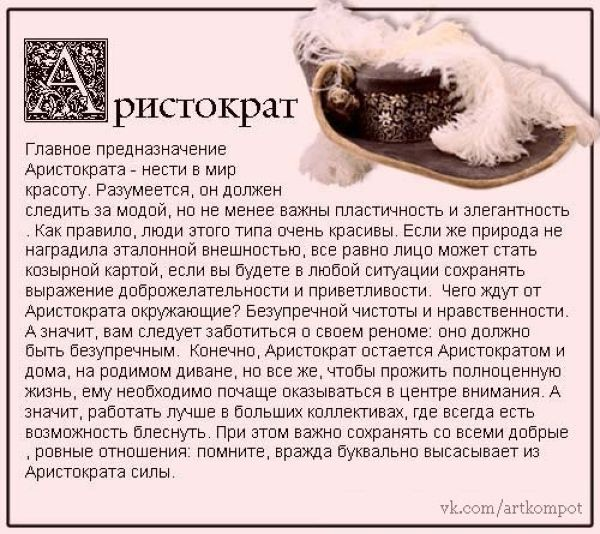 Кто ты по структурному гороскопу: король, шут или вектор?
