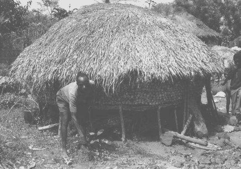 Graneros africanos I   TECTÓNICAblog  Los graneros de ramas de Benin y regiones próximas en el oeste de África se utilizan para almacenar y secar mijo y maíz. También pueden econtrarse en Guinea Sudán y Sahel. La plataforma de estos graneros está compuesta por una estructura de madera formada por cuatro vigas sobre cuatro apoyos rígidos. La estructura es además resistente a las termitas por lo que se eligen especies de madera concretas. La separación de esta plataforma respecto del suelo es…