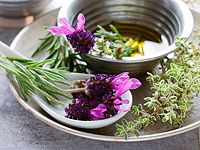 Připravte si vlastní bylinkový olej, hojivou mast, uklidňující koupel