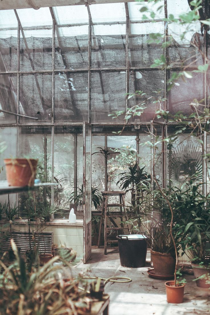 country home, greenhouse, Lisbon, Portugal - Daniel Farò
