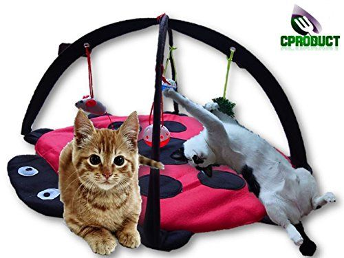 CProduct Cute Activity Center Play Mat with Hanging Mice and Balls Cat Toys | Cats Toys  sc 1 st  Pinterest & 1634 best Cats Toys images on Pinterest | Pet supplies Cat and ...