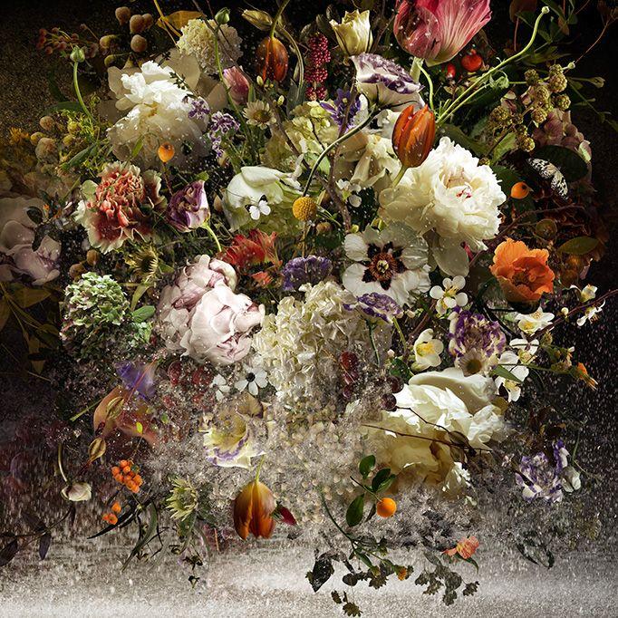 Assembled photographs byYsabel Lemay: Colors Photography, Ysabel Lemay, Digital Art, Fine Art Photography, Graphics Design, Beautiful Flowers, Digital Photography, Flowers Art, Ysabellemay