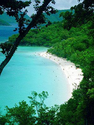Trunk Bay - St. John's, Virgin Islands