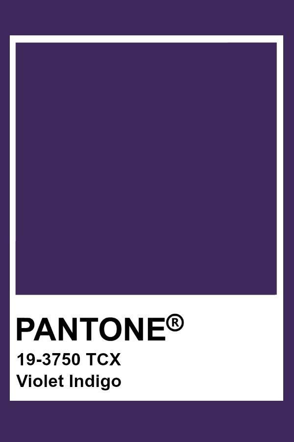 Purple Vs Violet