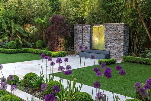 Town garden designed by Kate Gould. A stainless steel water feature is set into a dry stone wall. Rectangular patches of lawn are edged in box balls interplanted with purple and white allium. Boundary beds are filled with bamboo, cordyline, acer, Trachycarpus fortunei, hosta and euphorbia - © Nicola Stocken/GAP Photos