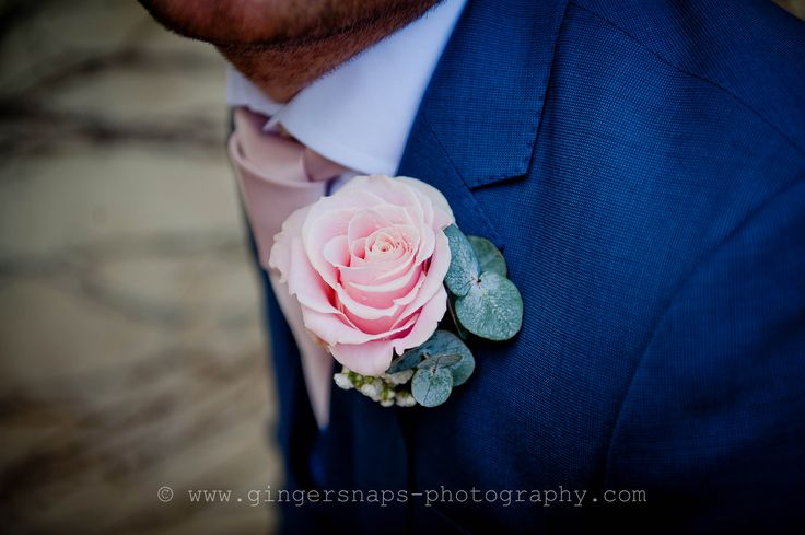 Groom's Buttonhole of pale pink Rose with Eucalyptus and ivory Gypsophelia at Northbrook Park by Fiona Curry Flowers. Photo: Gingersnaps