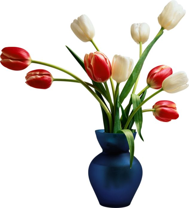 Pictures a vase flowers in of