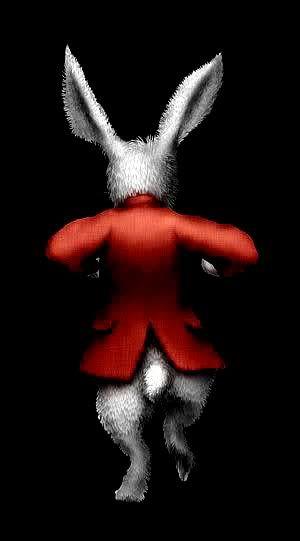 White Rabbit come back! Alice In Wonderland......