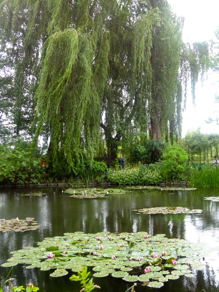 1000 images about claude monet 39 s garden in giverny france on pinterest for Monet s garden france