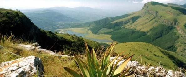 Image result for tzaneen
