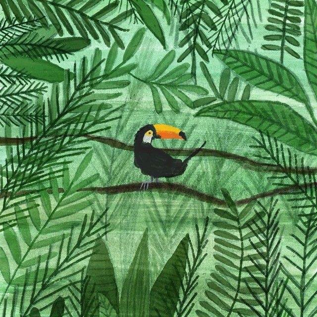 #toucan #jungle #illustrationartists  Elif Demir