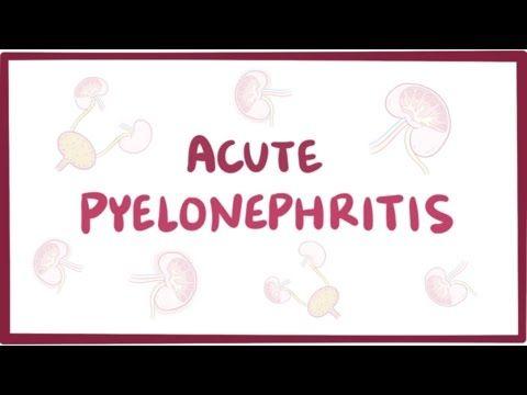 Chronic pyelonephritis (urinary tract infection) - causes, symptoms, pathology - YouTube