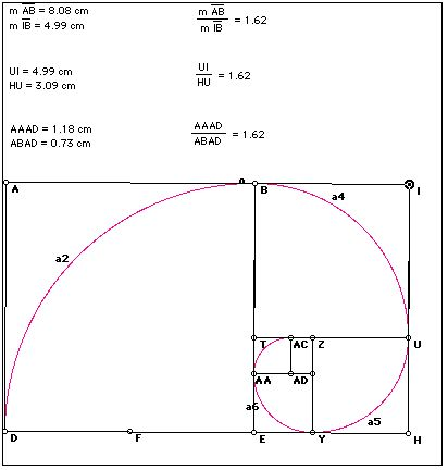 Golden Ratio Essays (Examples)