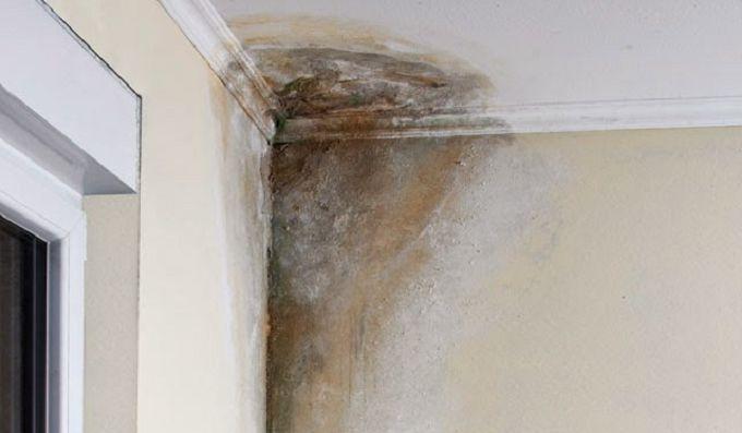 A umidade exagerada na nossa casa ou local de trabalho precisa ser combatida.