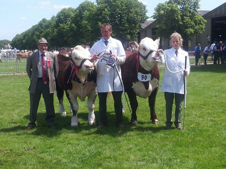 Hereford Cattle UK @The Hereford Cattle Society  ·  Jun 13 A delighted Heather Whittaker with her Supreme & Reserve Supreme Champions at the Royal Three Counties Show 2014