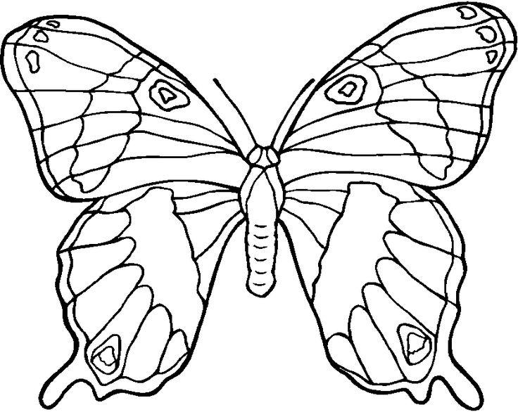 coloriage papillon des photos du papillon imprimer et colorier