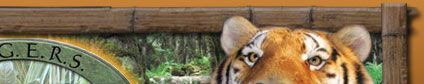 TIGERS | The Institute of the Greatly Endangered and Rare Species | Animal Actors | Myrtle Beach, South Carolina