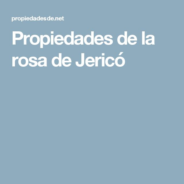 Propiedades de la rosa de Jericó