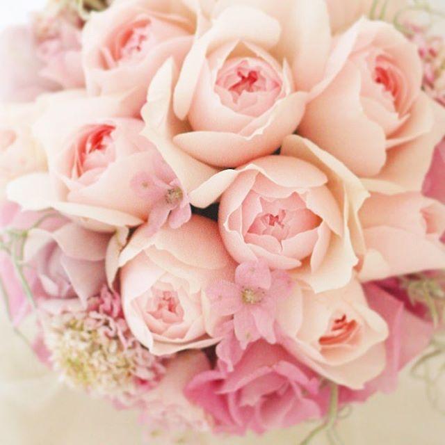 全国のラヴリー好きの皆様へ、甘々ピンクのブーケ!  2月14日、花を手作りする、1dayプリザーブドレッスン開催予定です。作るものは自由、4時間でブーケと花かんむりまでお一人で作成できます。二人で参加なら、ご両親へのギフトまで、初めてでも十分作れます。ブーケを作る新郎の花男子急増中、詳細はブログにて。#ブーケ#ピンク#披露宴 #結婚式#結婚#結婚準備 #結婚式準備 #結婚式コーデ #バラ#一会#プレ花嫁 #ウエディング#ウェディング #ウェディングdiy #ラブリー#プリザーブドフラワー #花嫁diy #2010