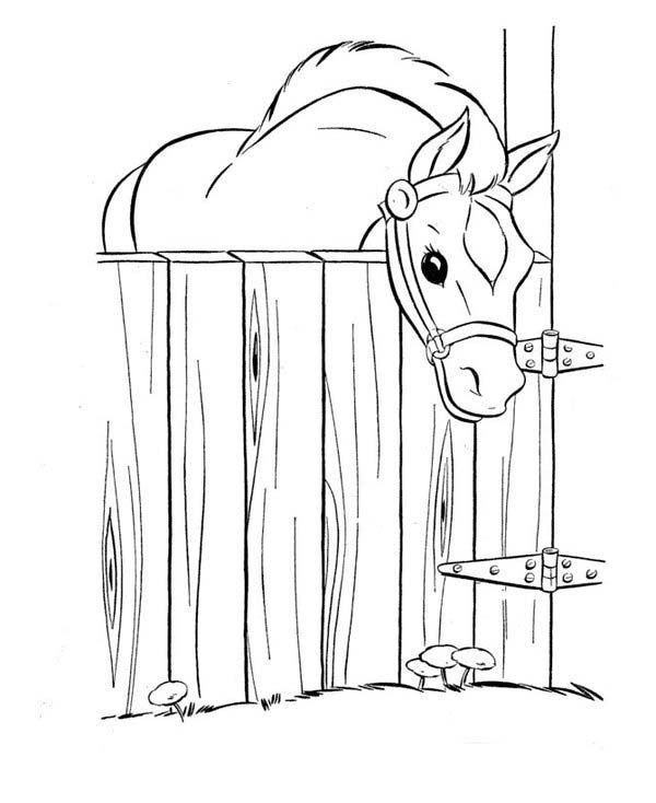 Horse Horse In The Stable In Horses Coloring Page With Images