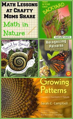 Crafty Moms Share: Math Lessons: Math in Nature