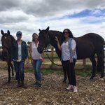 Michele Attias (@AttiasMichele) | Twitter Leadership with horses