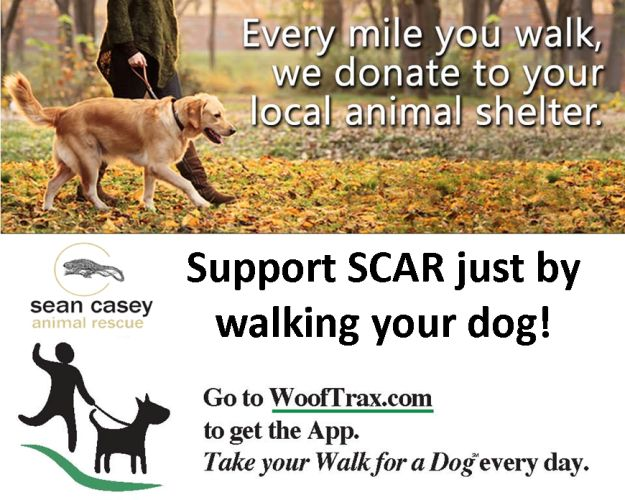 About Your Donation | Sean Casey Animal Rescue