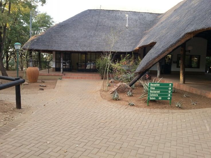 Shingwedzi camp - Kruger Park - photo Catharine Henn [very different from when I was there in 1975!]