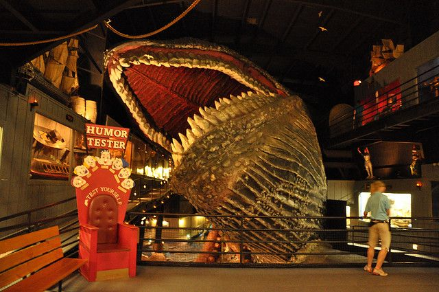 Giant whale at house on the rock by an ocean and a rock away via