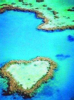 """Heart Reef - Airlie Beach, Queensland, Australien ... einzige Frage hier ist: """"via Charter-oder Privat-Jet?"""" Gewinnen Sie alles auf www.Lottoland.com ;)"""